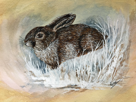 Benningfield rabbit