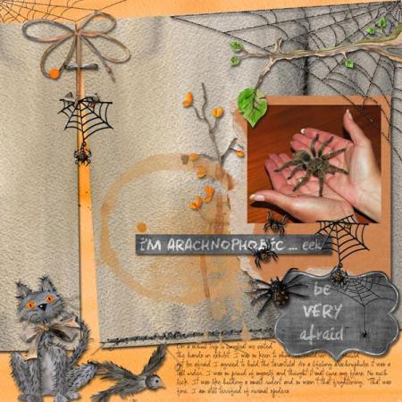 Arachnaphobe