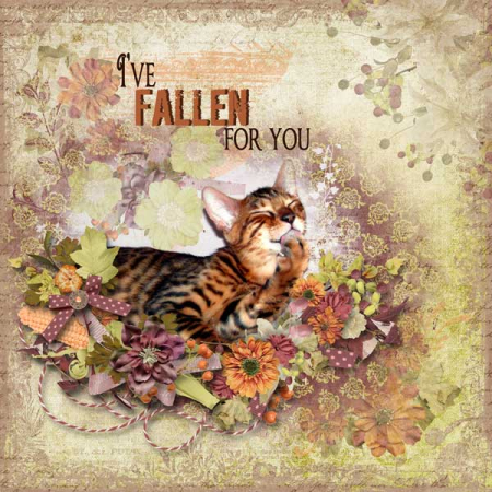 Fallen-for-you