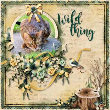 Nu wild-thing