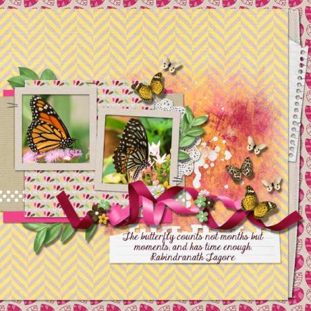 Nu-butterfly-garden