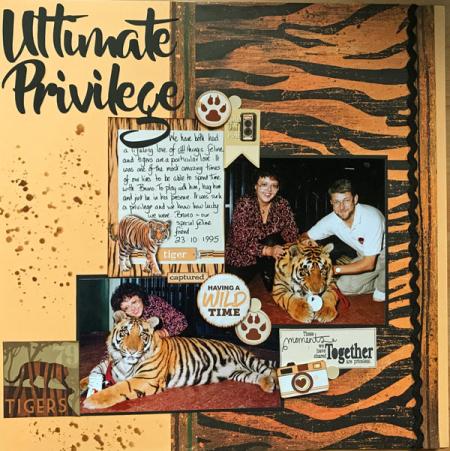 Ultimate-privilege