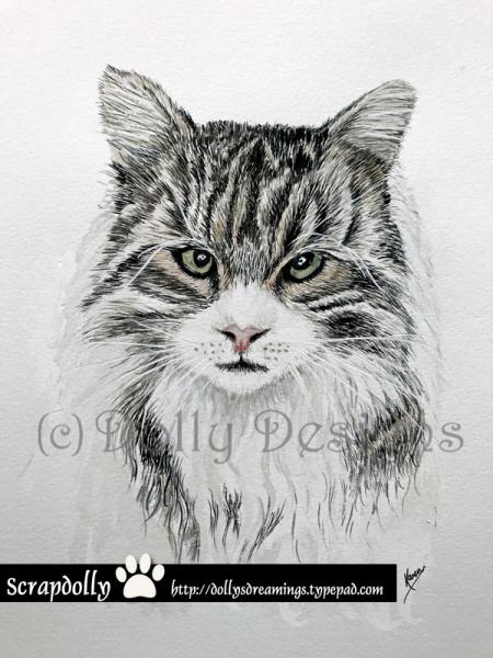 Cat-commission-1-web