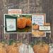 Grateful-pumpkins