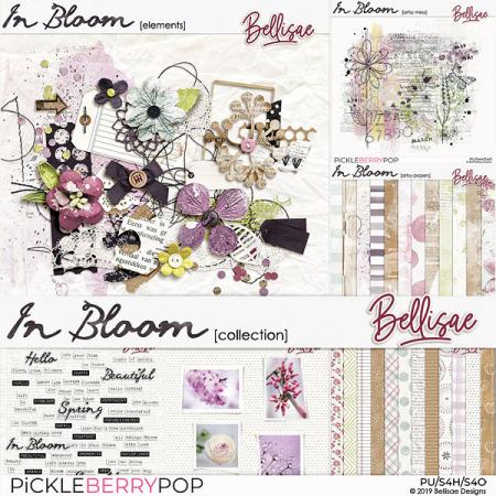 Bellisae-InBloom_coll-pv(web)