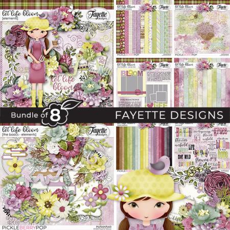 Fayette_2020-03_BBD_bundle8