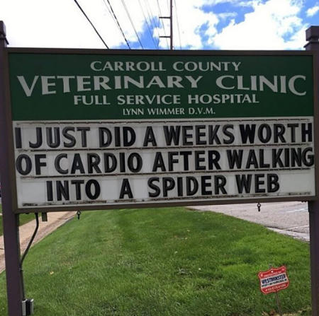 Funny-carroll-county-veterinary-clinic-signs-5e956bdcb2bca__700