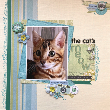 The-cat's-meow