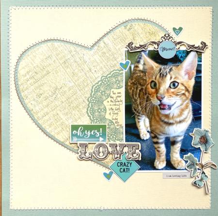Love-crazy-cat