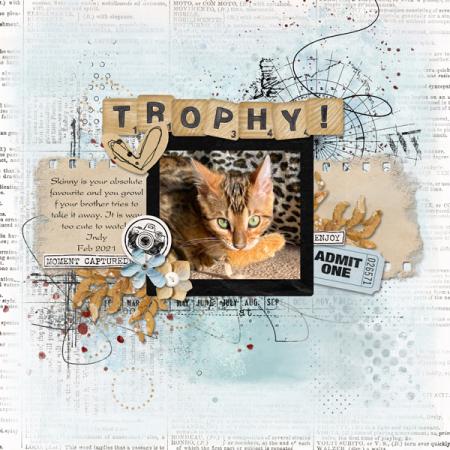 Trophy-web