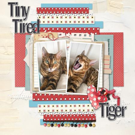Tiny-tired-tiger