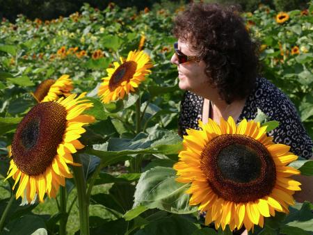 Flower farm 5