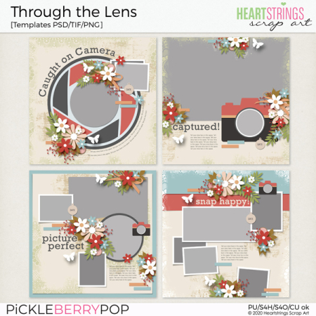 HSA-through-the-lens-PBP