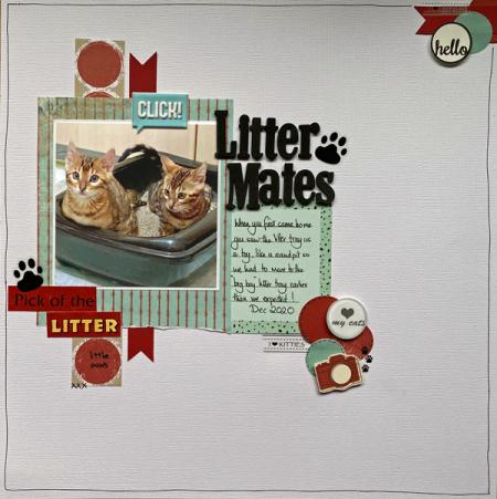 Litter-mates