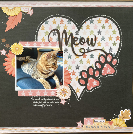 Meow pawprints