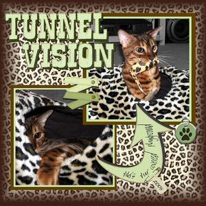 Copy_of_tunnel_fun