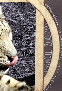 A_lick_of_colour_close_1