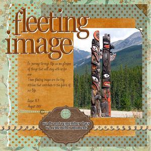 Fleeting_image