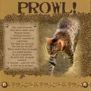 Copy_of_prowl