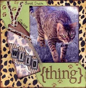 Wild_thing