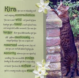 Kira_textual