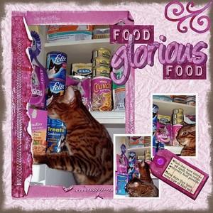 Copy_of_food_glorious_food