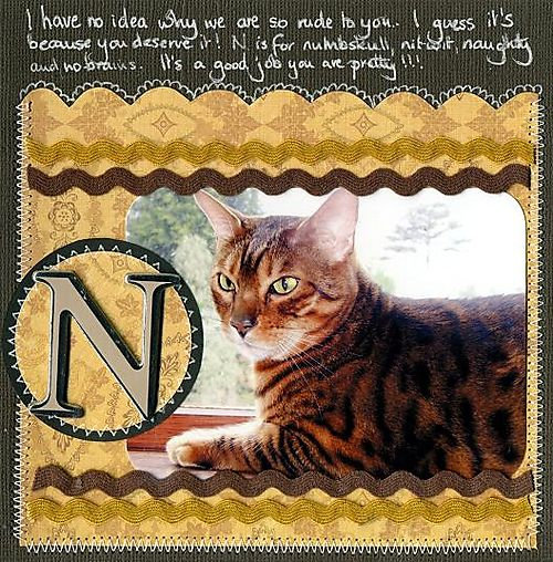 N is for